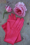 Red Gloves and Rose