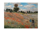 Poppy Field (Detail)