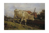 Plowing with Two Oxen