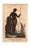 The Senegal Negro Female