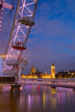 River Thames  Houses of Parliament and London Eye at Dusk  London  England  United Kingdom  Europe