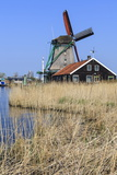 Preserved Historic Windmills and Houses in Zaanse Schans