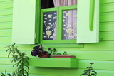 Cottage Window in Roseau  Dominica  Windward Islands  West Indies  Caribbean  Central America