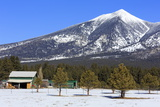 San Francisco Peak  Flagstaff  Arizona  United States of America  North America