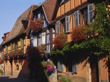 Timber Framed Houses in Niedermorschwihr  Alsace  France