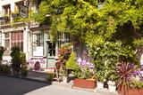 A Cafe in the Backstreets of Ile De La Cite  Paris  France  Europe
