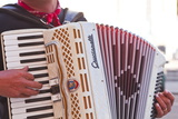 A Street Musician Plays the Accordion  Lyon  Rhone  Rhone-Alpes  France  Europe