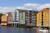 Old Fishing Warehouses  Trondheim  Sor-Trondelag  Norway  Scandinavia  Europe