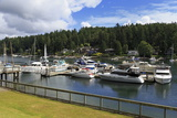Gig Harbor Marina  Tacoma  Washington State  United States of America  North America