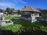 Ornamental Lake  Raja of Karangasem Palace  Amlapura  Bali  Indonesia