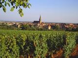 Bergheim  Alsace  France