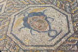 Mosaic Detail from the House of Dionysus
