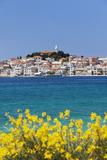 Primosten  Adriatic Coast  Dalamtia  Croatia  Europe