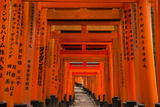The Endless Red Gates (Torii) of Kyoto's Fushimi Inari Shrine  Kyoto  Japan  Asia