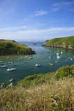 Solva Harbour  Pembrokeshire  Wales  United Kingdom  Europe