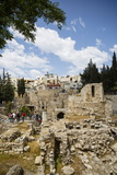 The Pool of Bethesda  the Ruins of the Byzantine Church  Jerusalem  Israel  Middle East