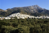 Filoti in Olive Groves  Tragea  Naxos  Cyclades  Greece