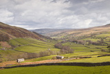 Swaledale in the Yorkshire Dales National Park  Yorkshire  England  United Kingdom  Europe