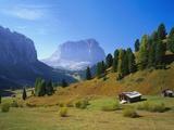 Selva Di Val Gardena  Trentino-Alto Adige and the Dolomites  Italy