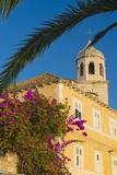 Cavtat  Dubrovnik Riviera  Croatia  Europe
