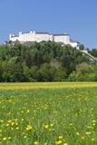Hohensalzburg Fortress  Salzburg  Salzburger Land  Austria  Europe