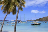 Boats in Cruz Bay  St John  United States Virgin Islands  West Indies  Caribbean  Central America