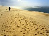 Dune De Pilat  Gironde  Aquitaine  France