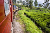 Train Journey Through Tea Plantations