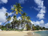 Mullins Beach  St Peter Parish  Barbados  Caribbean