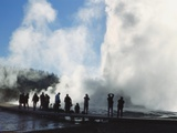Castle Geyser  Upper Geyser Basin  Yellowstone National Park  Wyoming  Usa