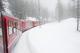 Bernina Railway Line  UNESCO World Heritage Site  Graubunden  Swiss Alps  Switzerland  Europe