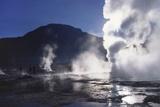 Steam Rising from Geysers and Fumaroles  El Tatio  Atacama  Chile