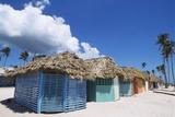 Saona Island  Dominican Republic  Caribbean
