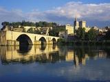 Papal Palace  Avignon  Vaucluse  Provence-Alpes-Cote D'Azur  France