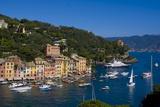 Portofino  Riviera Di Levante  Liguria  Italy  Europe