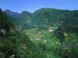 Cruzinhas  Madeira  Portugal