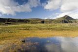 Landscape Near Solheimajokull  Iceland  Polar Regions