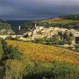 View over Village and Minervois Vineyards  Minerve  Languedoc-Roussillon  France  Europe