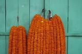 Door  Padlock and Flower Garlands  Kolkata (Calcutta)  West Bengal  India  Asia
