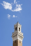 The Bell Tower of Palazzo Pubblico with Cloud  Sienna  Tuscany  Italy