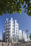 Neuer Zollhof  Designed by Frank Gehry  and Rheinturm Tower