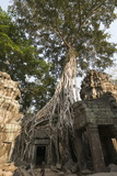 Taprohm Kei Temple  Angkor Thom  Siem Reap  Cambodia