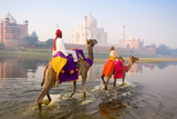 Man and Boy Riding Camels in the Yamuna River in Front of the Taj Mahal