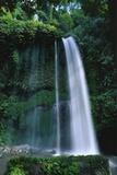 Waterfall in Lombok  Indonesia