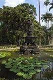 Fountain of the Muses  Rio De Janeiro Botanical Gardens  Rio De Janeiro  Brazil  South America