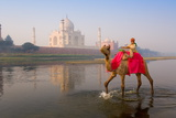 Boy Riding Camel in the Yamuna River in Front of the Taj Mahal Papier Photo par Gavin Hellier