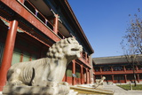 A Lion Statue at Zhen Jue Temple  Beijing  China  Asia