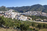 Elevated View over the Historic Hilltop Town of Moulay Idriss  Morocco  North Africa  Africa