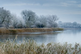 A Scenic View Shows Frosty Conditions at Cotswold Water Park