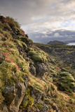 Thingvellir National Park  UNESCO World Heritage Site  Iceland  Polar Regions